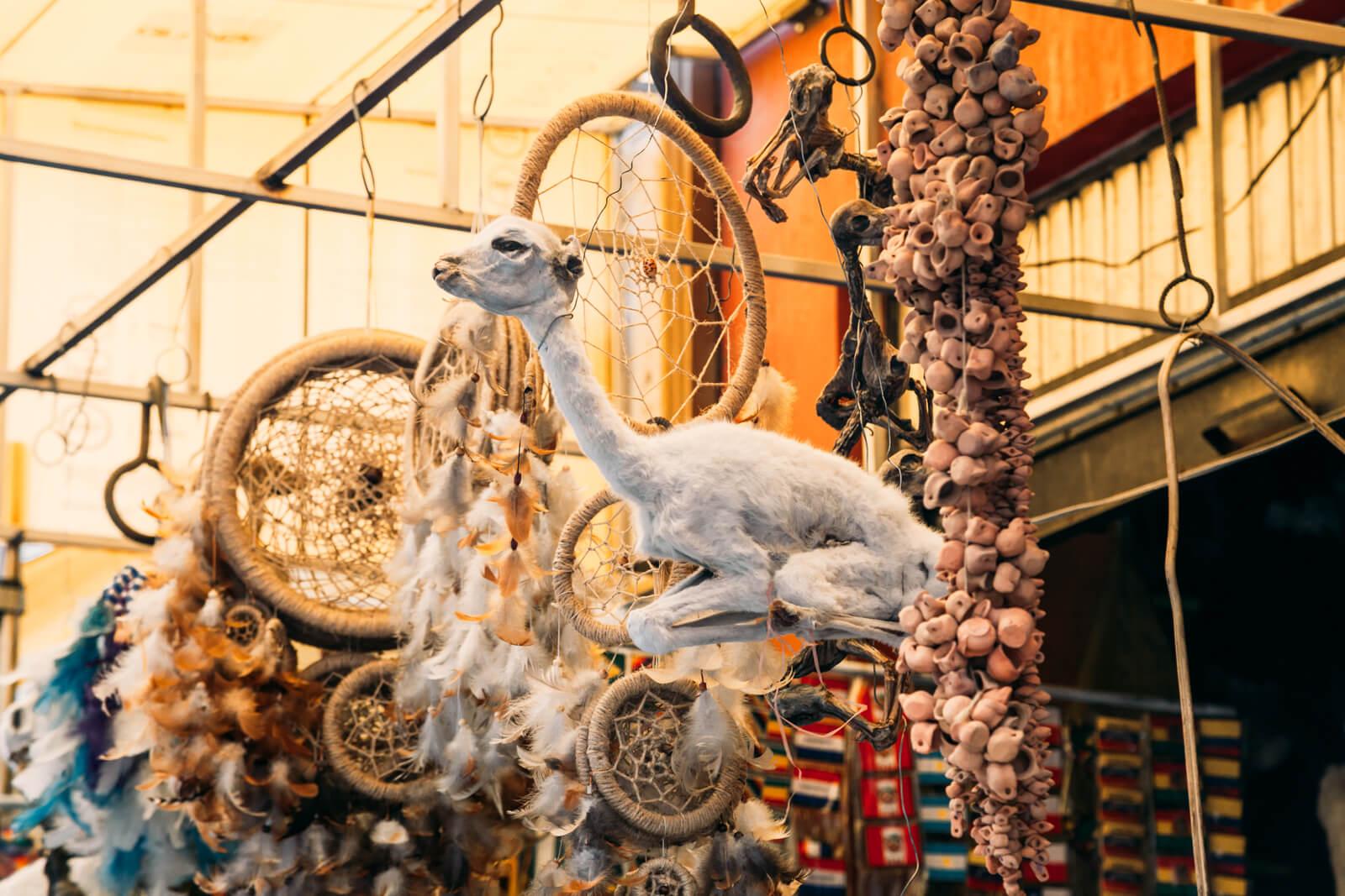 Mercado das Bruxas de La Paz - feto de lhama para oferenda