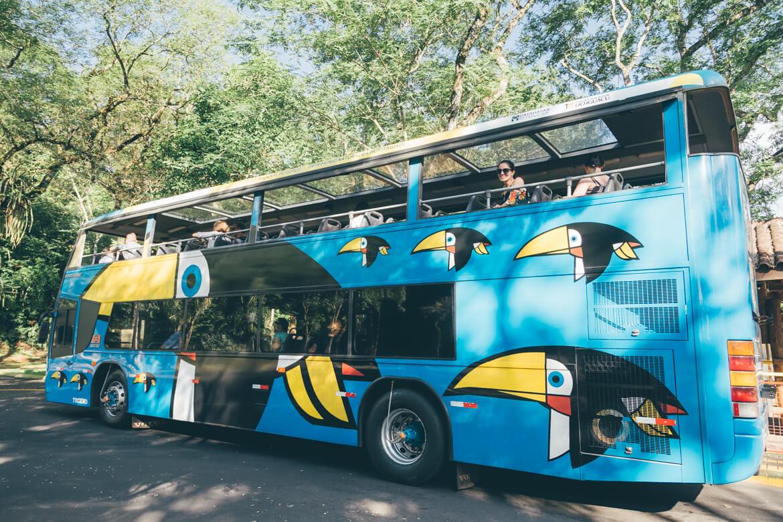 ônibus estiloso de tucanos no Parque Nacional de Iguazu