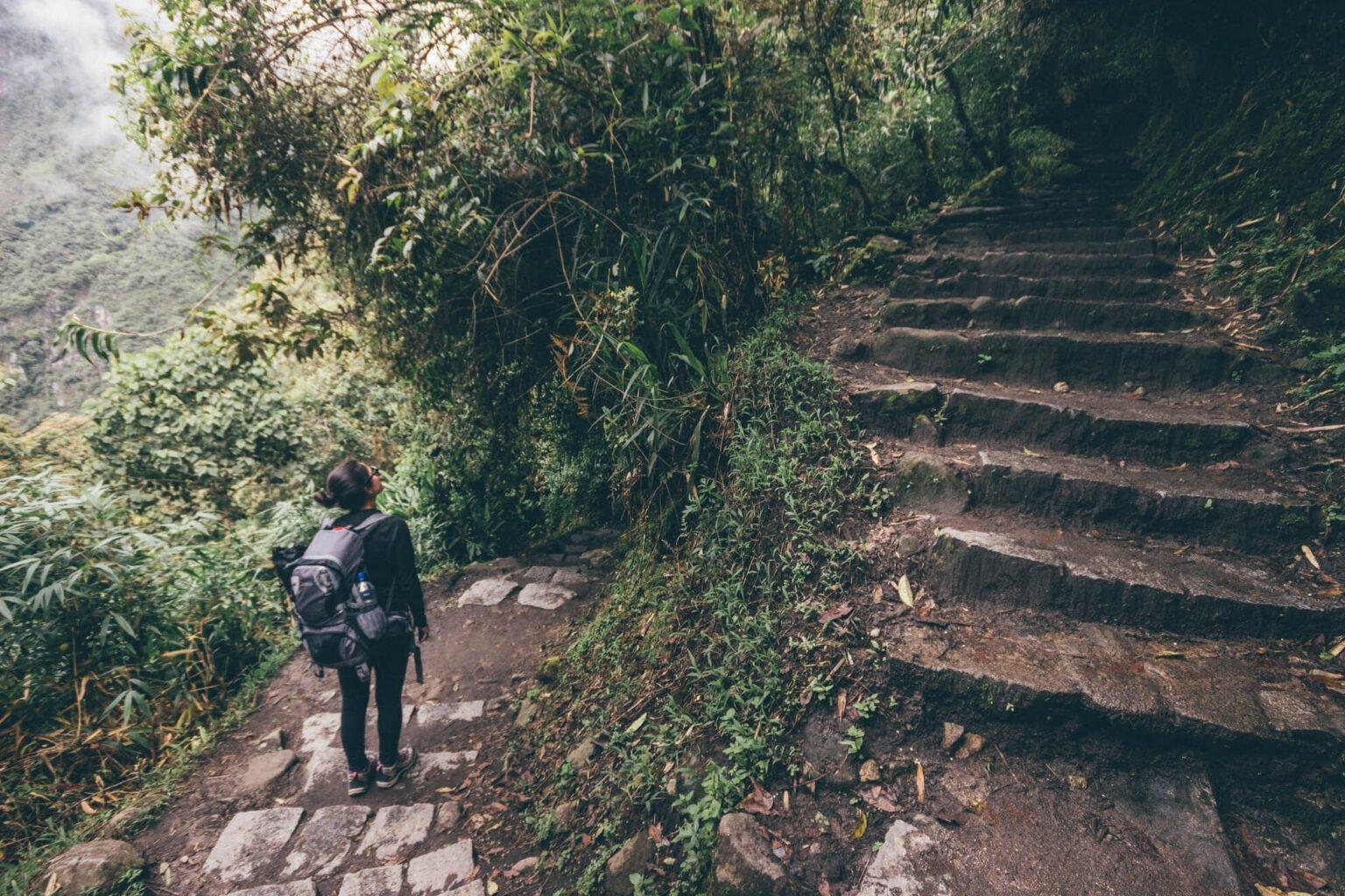 Alguns das centenas de degraus da escadaria que liga Águas Calientes a Machu Picchu