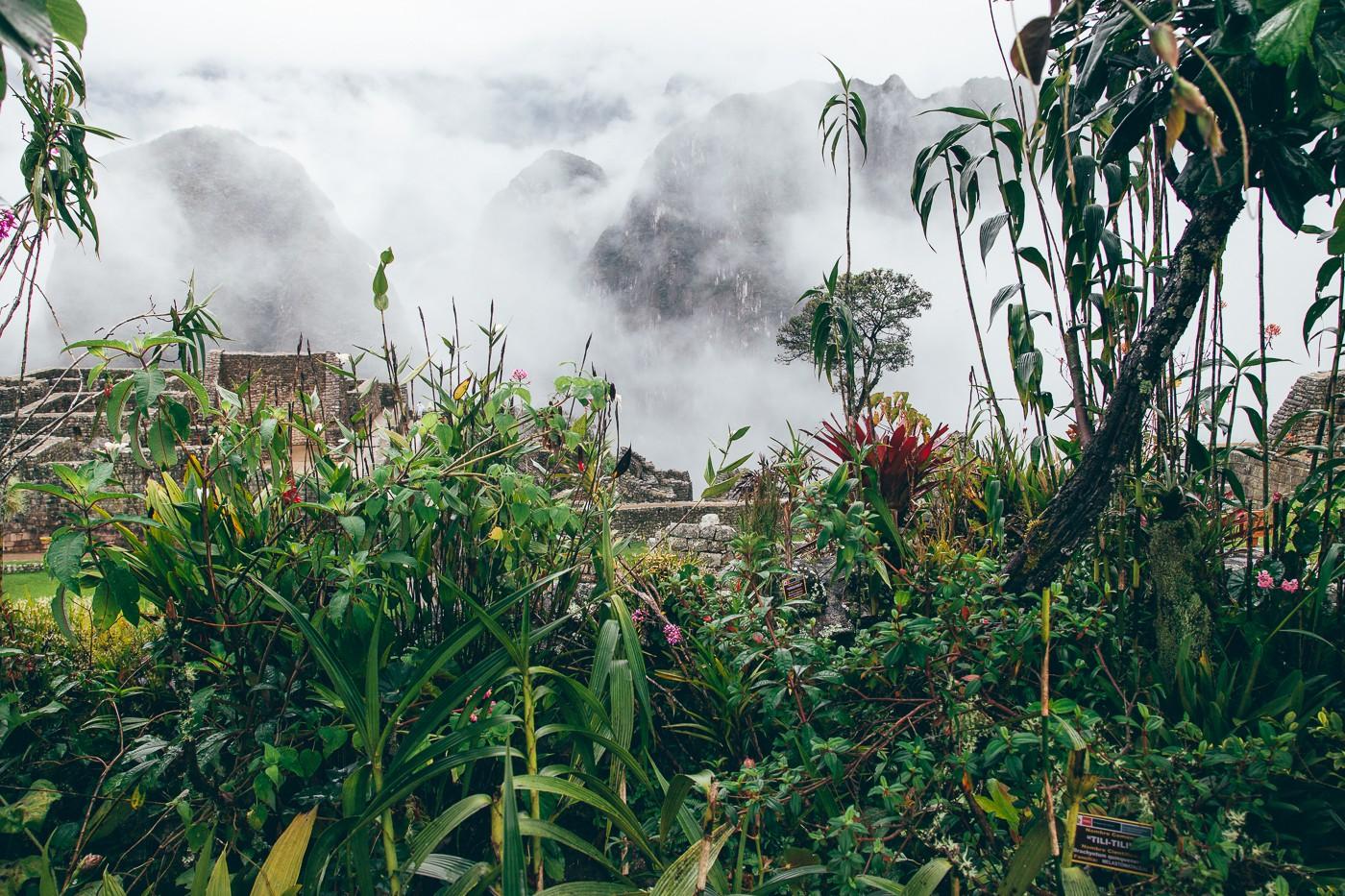Um dos jardins de Machu Picchu
