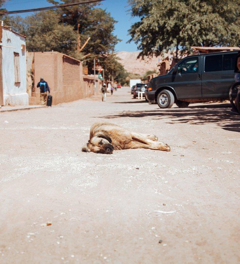 San Pedro do Atacama