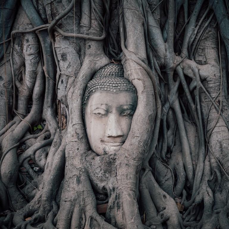 Umas das opções do que fazer em Bangkok é conhecer as ruínas de Ayuthaya