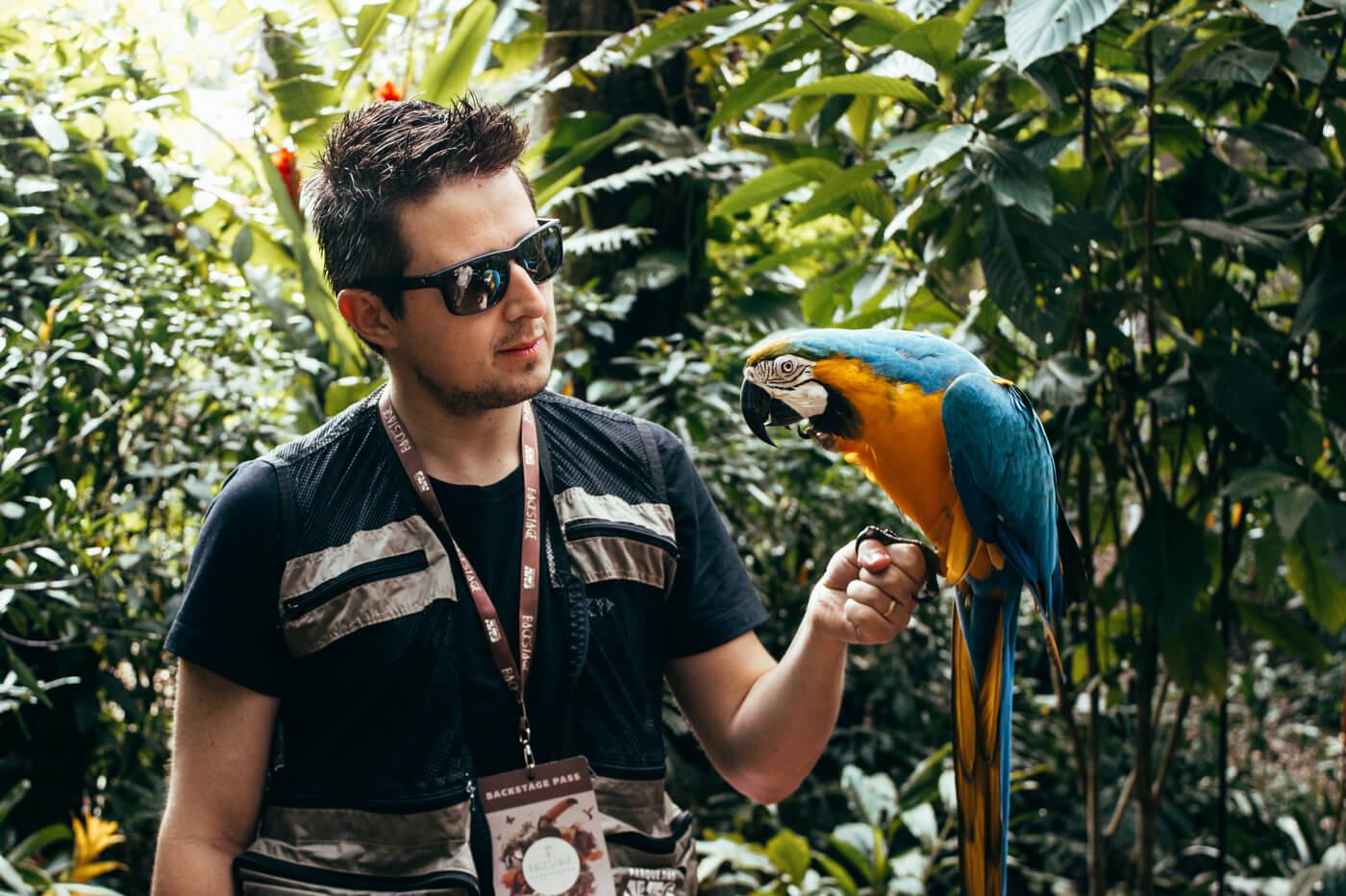 o que fazer em Foz do Iguaçu - momento incrível durante o Backstage Experience, no Parque das Aves!