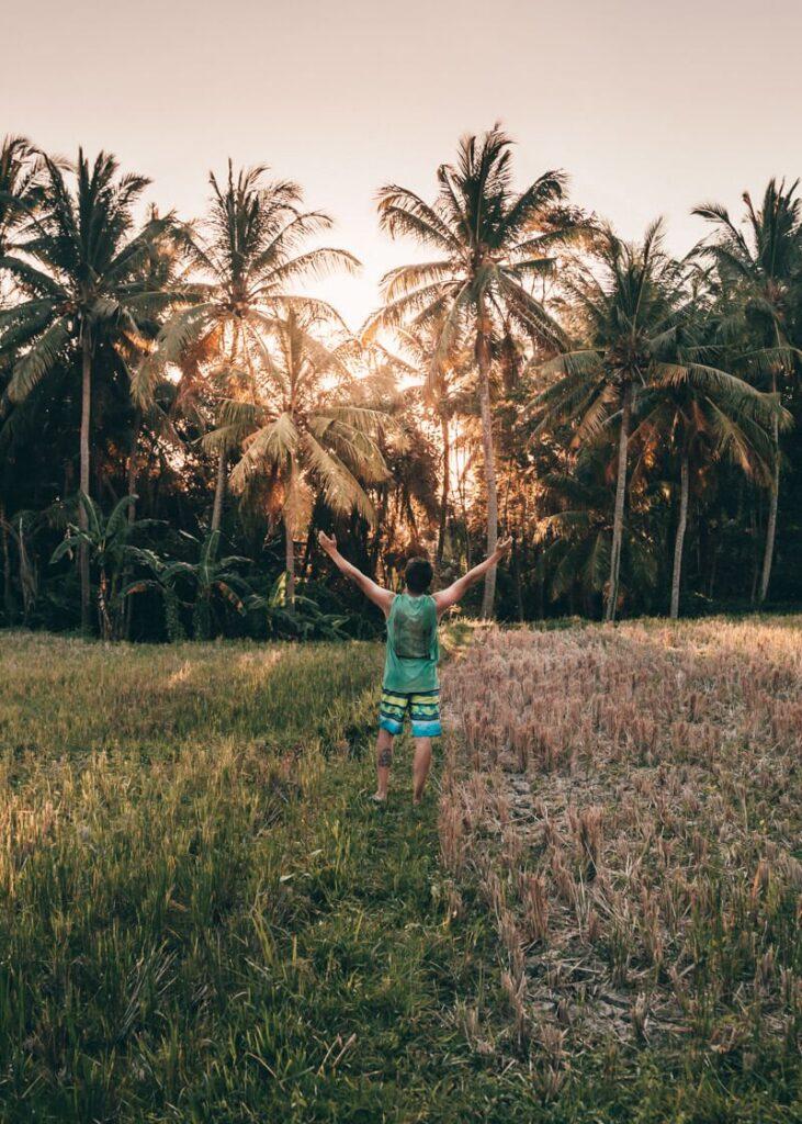 Ubud, Indonésia - Campos de Arroz