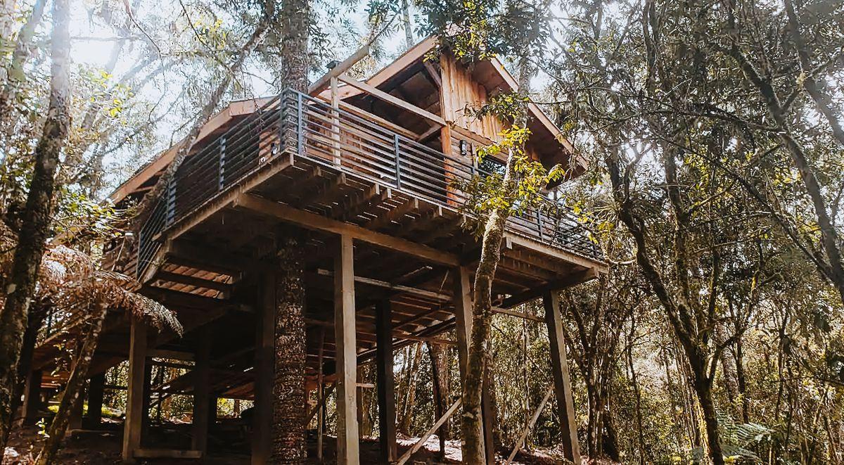 Airbnb Campos do Jordão - casa na árvore