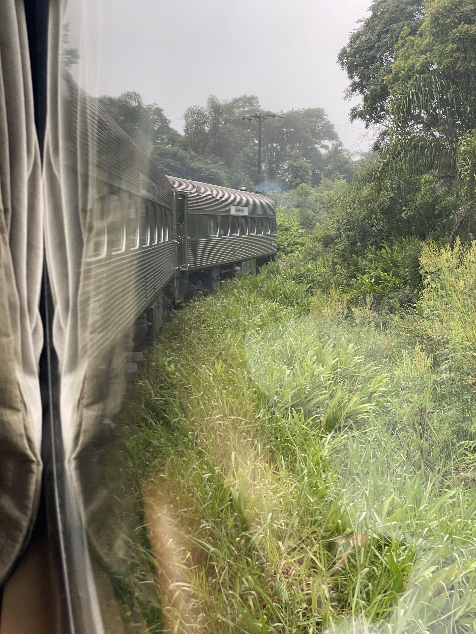Passeio de Trem – Curitiba a Morretes