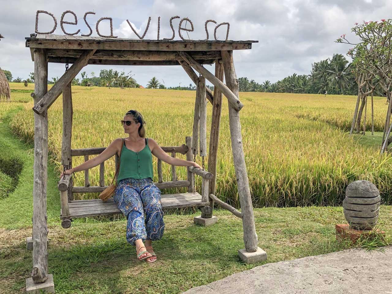 Balanço e campos de arroz Desa Visesa
