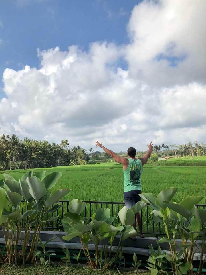 Campo de arroz do UbudOne Villas Bali