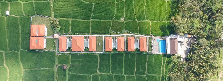 UbudOne Villas e campos de arroz