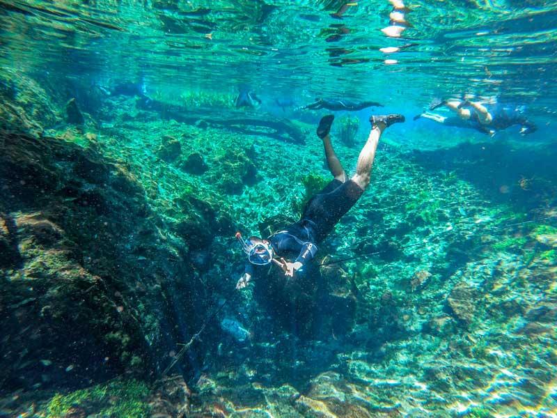 Nascente Azul com suas água cristalinas é um dos melhores passeios em Bonito MS
