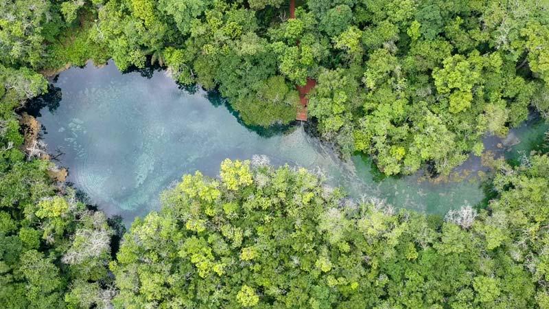 Foto aérea do Rio da Prata, atração imperdível do roteiro de viagem para Bonito MS