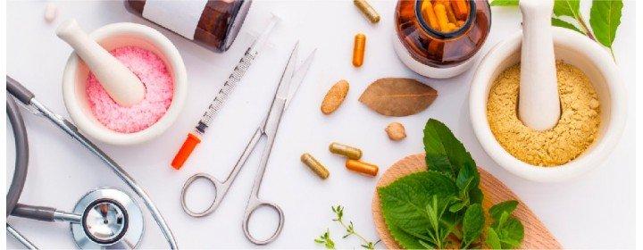 Fitoterapia - 10 tratamentos naturais que você pode cultivar no seu quintal