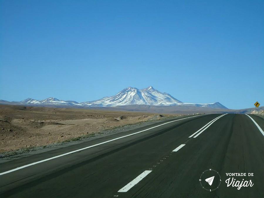 Deserto do Atacama - Estrada pro Atacama - foto Caroline Pereira