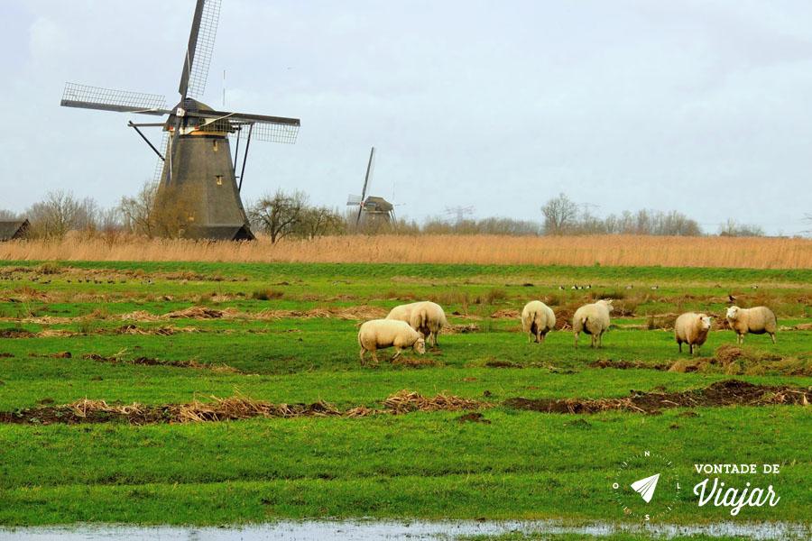 Dicas da Holanda - Moinho holandes