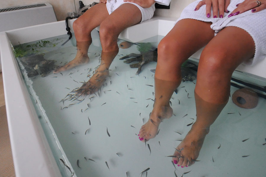 Tailandia - Fish Spa - Foto AdPersonam