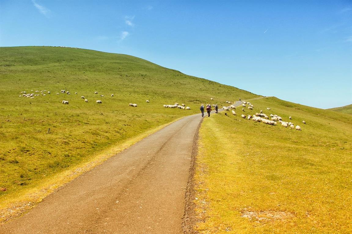 Caminhos de Santiago - Os Pirineus