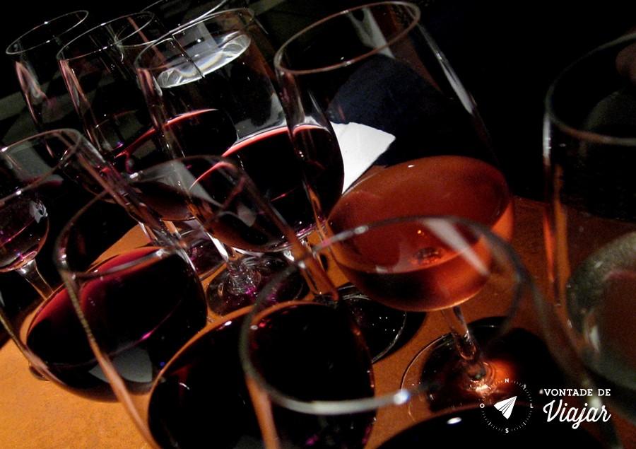Mendoza - Degustacao de vinho