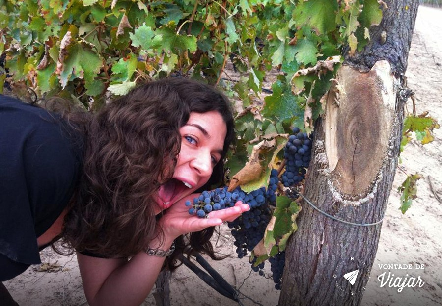 Mendoza - Marisa com uvas