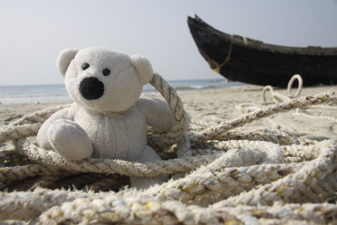 Amizade de intercambio - o ursinho viajante