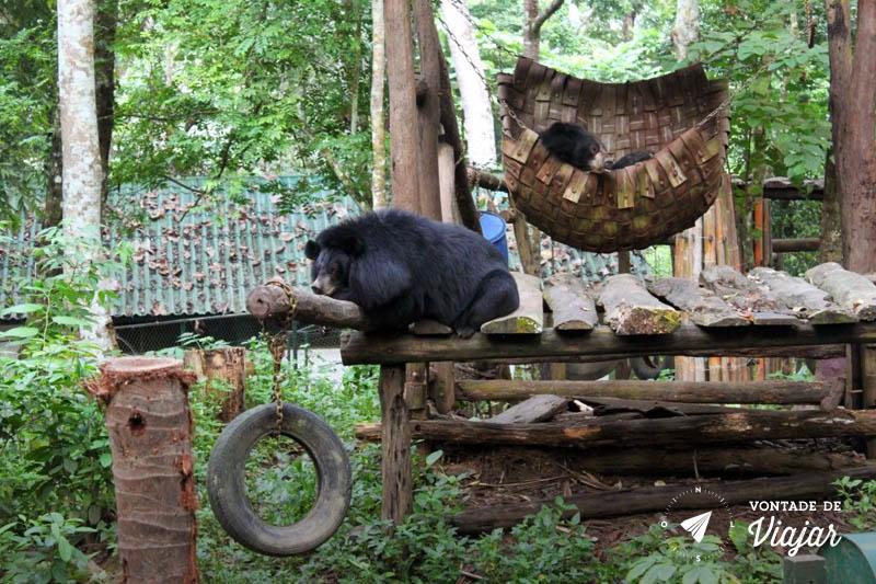 Luang Prabang - Ursos no parque da cachoeira Kuang Si