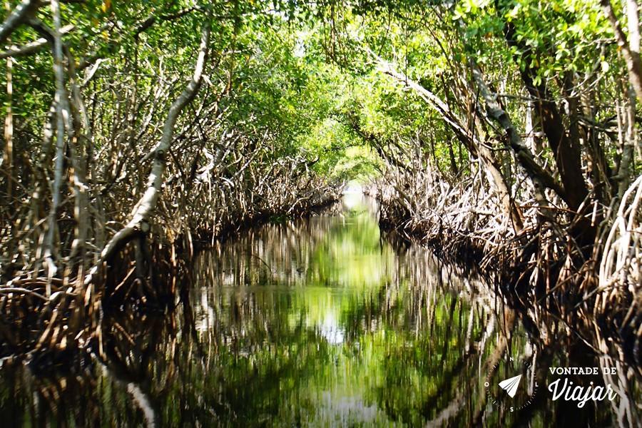 Florida - Parque Nacional de Everglades