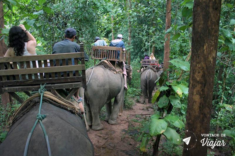 Luang Prabang - Passeio de elefante no Laos