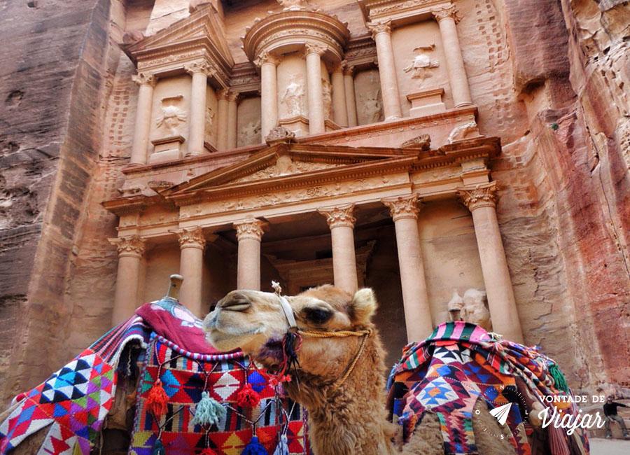 Petra - Camelos em Petra na Jordania
