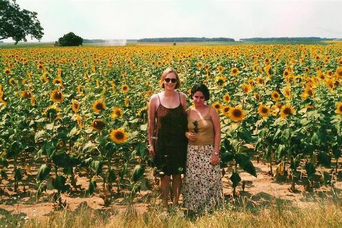 Amizade de intercambio - Gabi e Suzi no campo de girassois