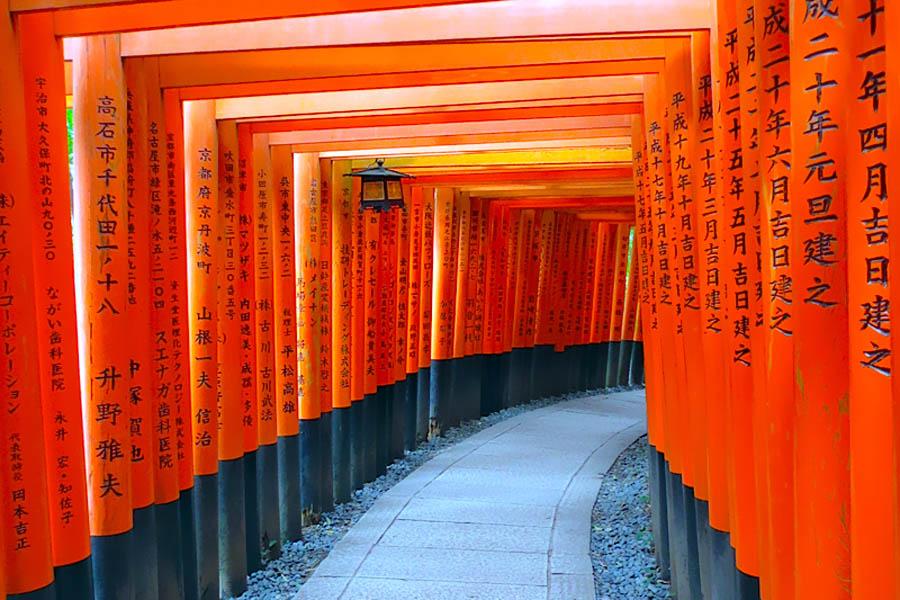 Roteiro Japao - Fushimi Inari tunel no templo em Kyoto