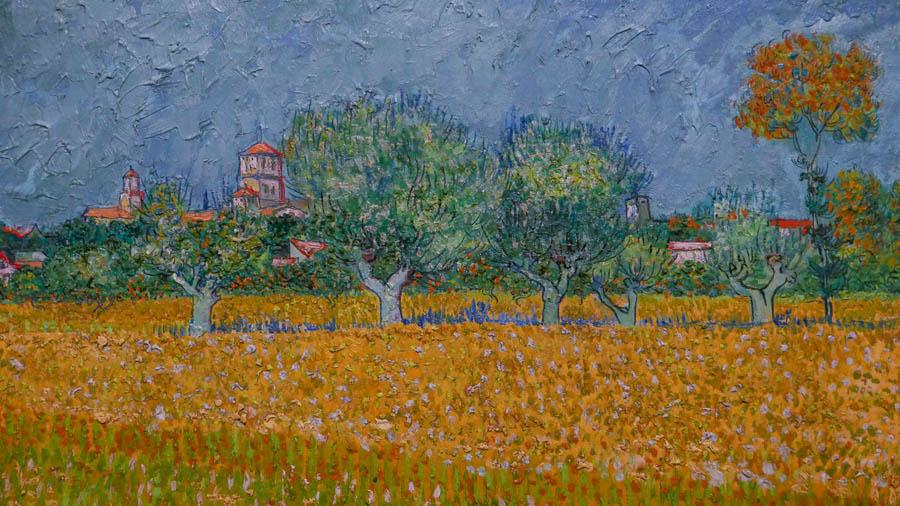 Van Gogh em Arles - Detalhe do quadro Vista de Arles com Lirios