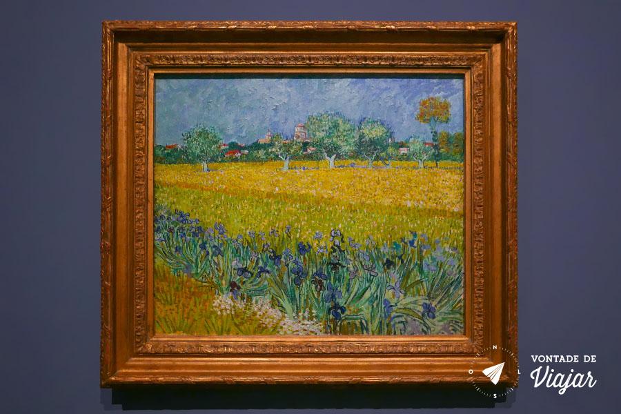 Van Gogh em Arles - Vista de Arles com Lirios em exposicao